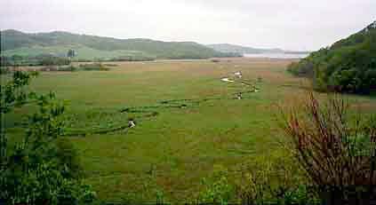 日本全国の湿地面積変化の調査概...