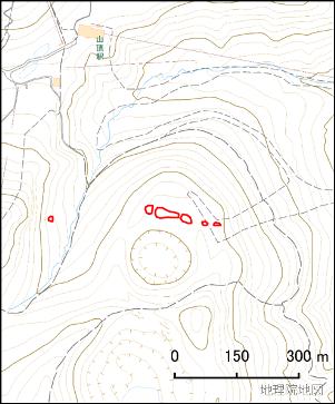 だいち2号による衛星SAR画像位置図